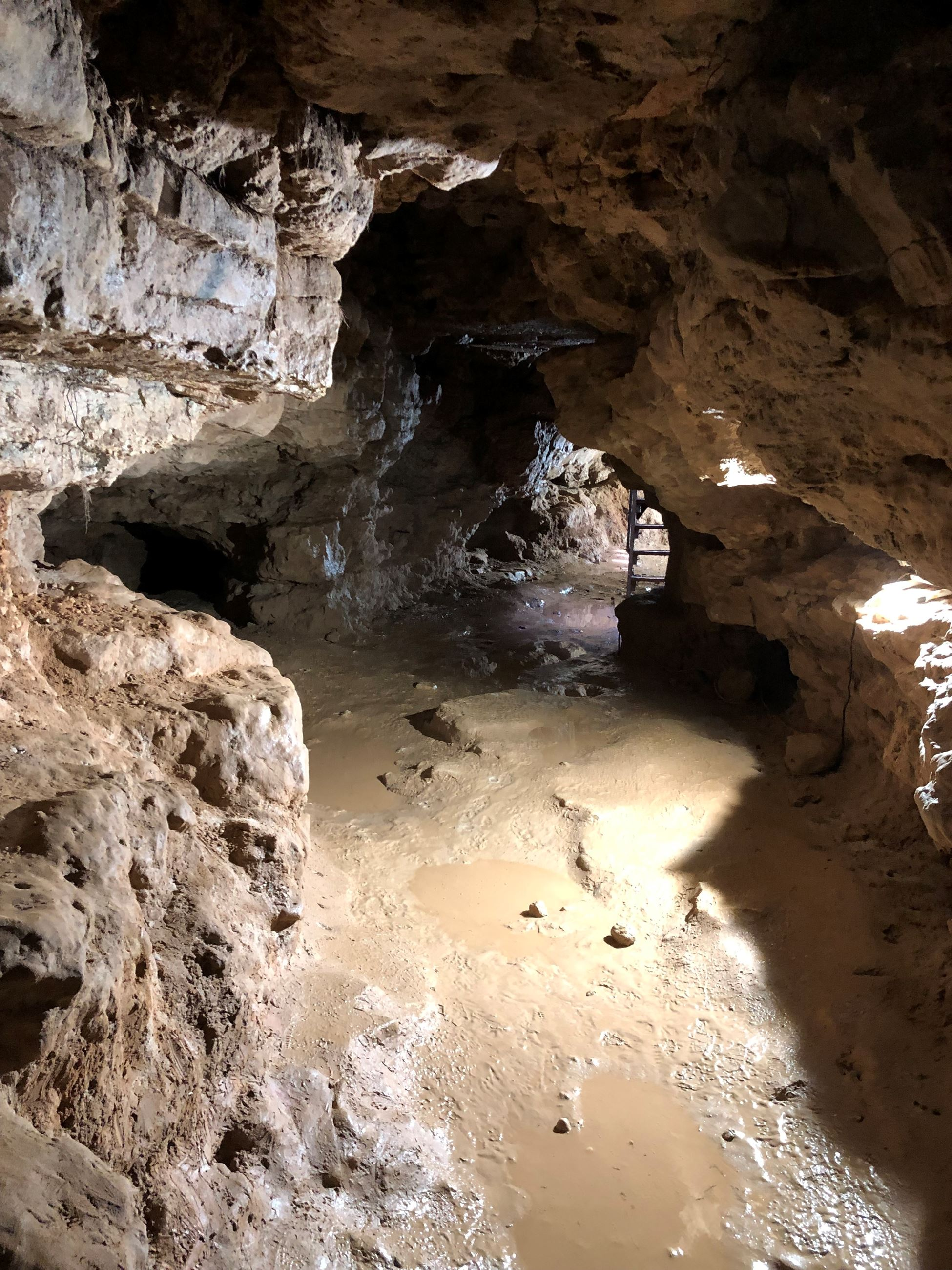 the inside of a large cave. It looks muddy and there are puddles.